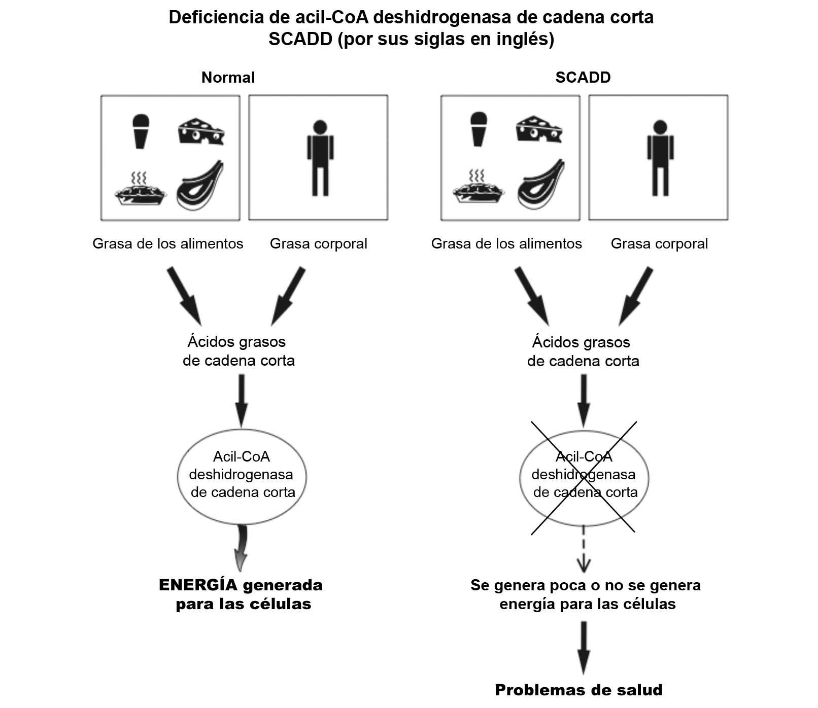SCADD Diagram