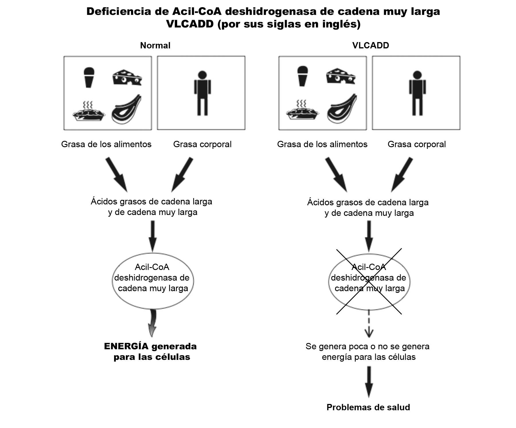VLCADD Diagram