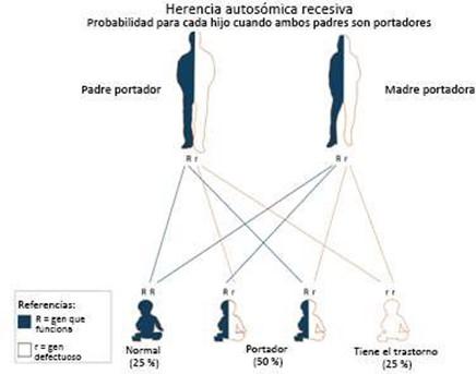 Autosomal Recesive Inheritance