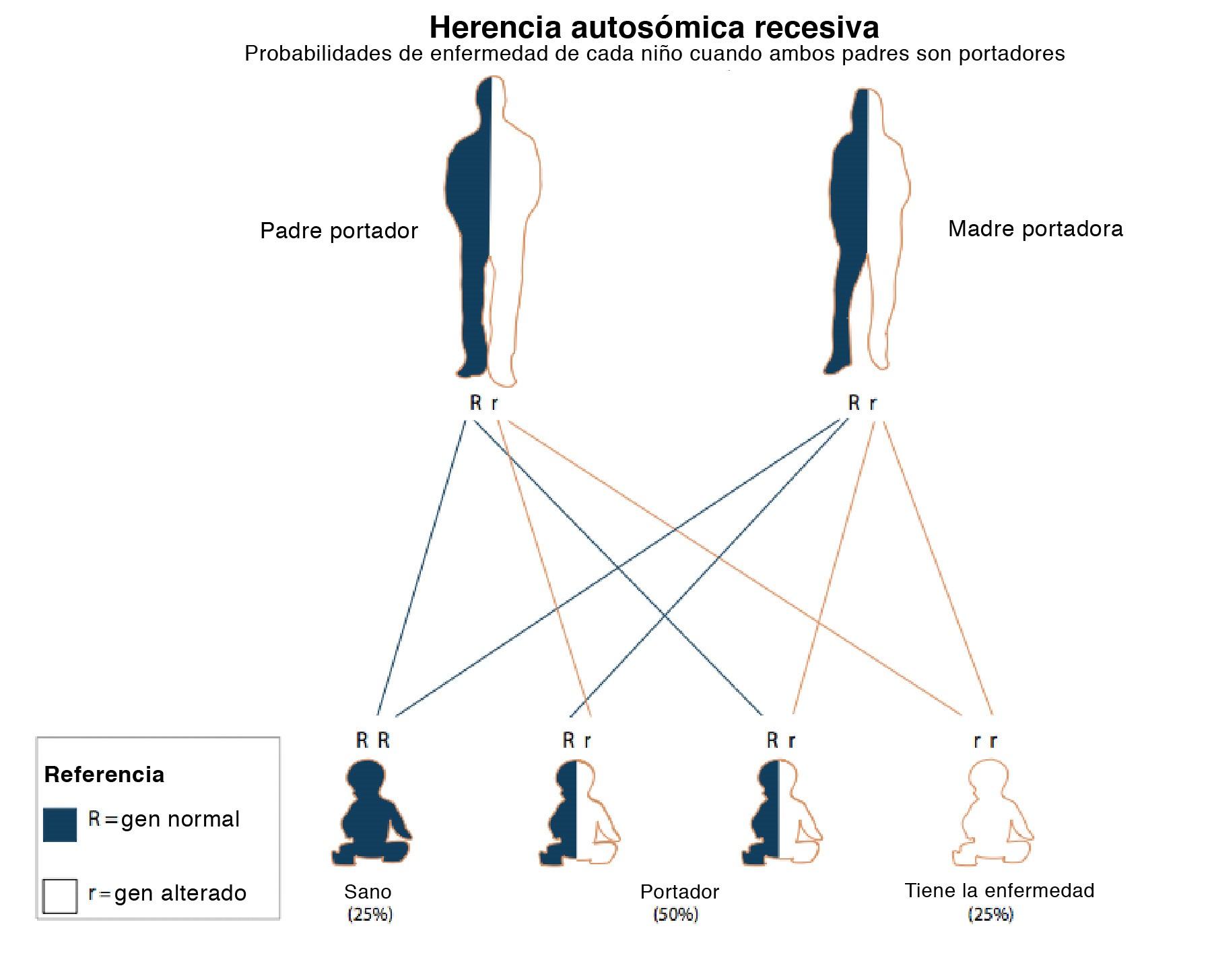 Autosomal Recessive Inheritance Chart