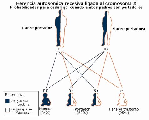 Image of heritance Chart